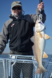Ron's Louisiana redfish on Fly